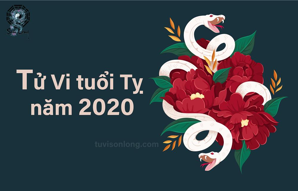 TỬ VI TUỔI TỴ NĂM 2020 – ĐÔNG TÀNG CHI XÀ – RẮN NGỦ ĐÔNG